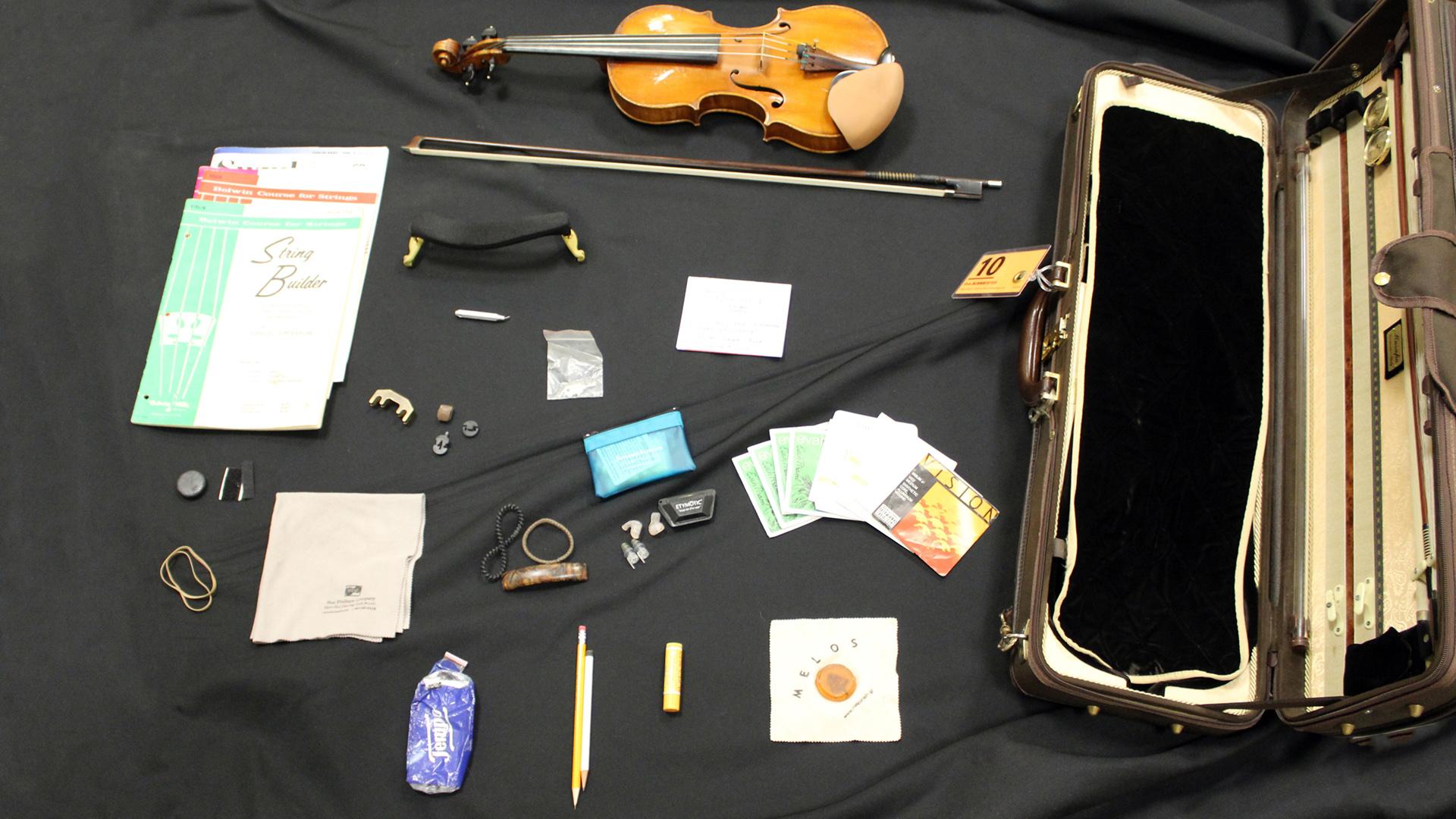 Case Study: Violinist Eva Burmeister