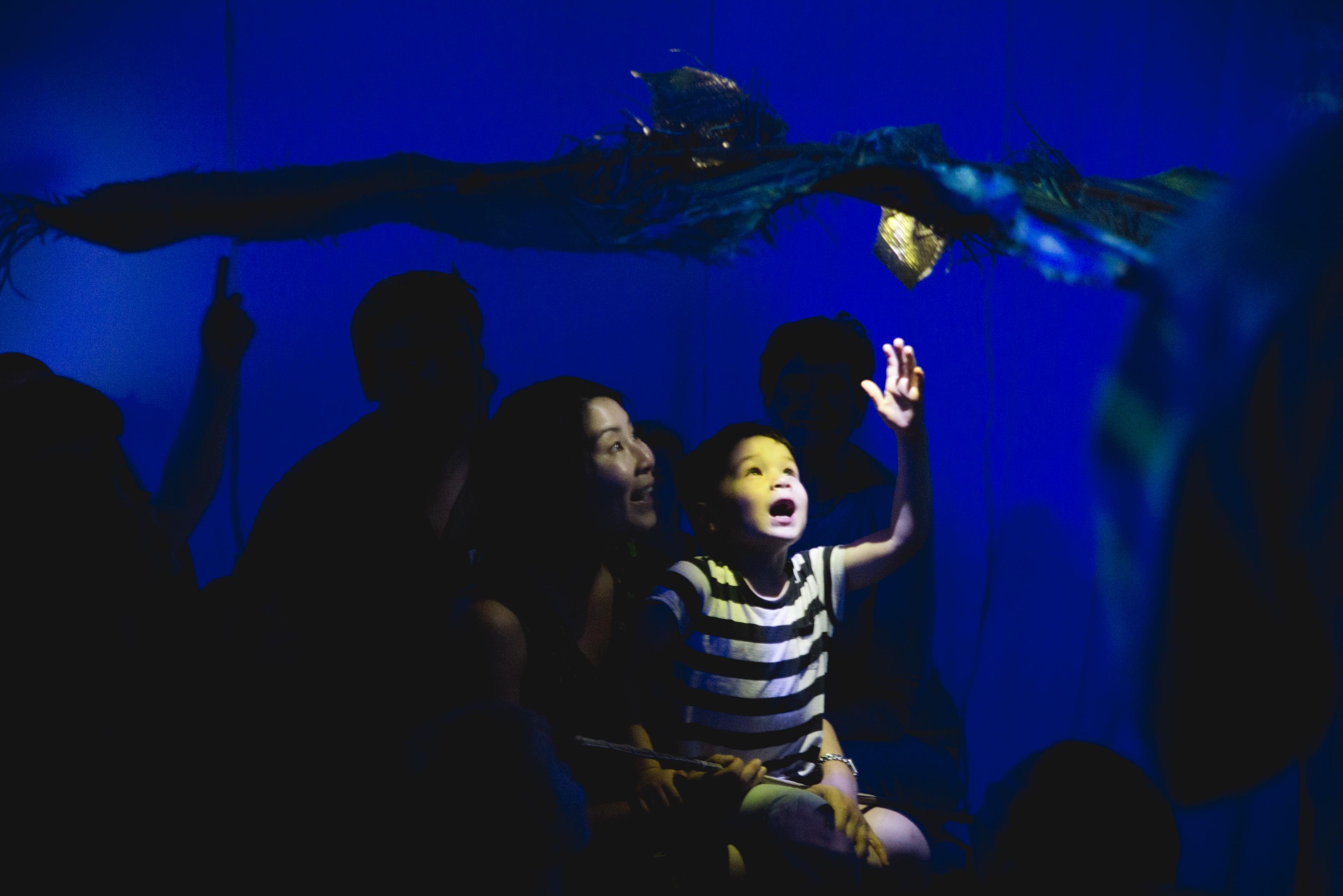 Cerita Anak (Child's Story)